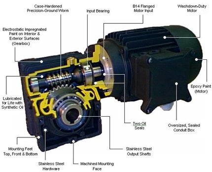 Ac Dc Motors Sales And Service Standard Drive Services Inc